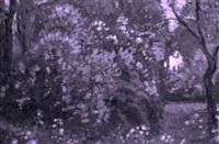 garten mit blühendem fliederbusch by maurice mathey