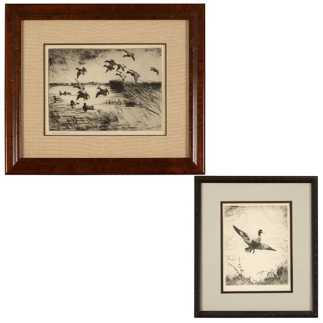 flock of landing ducks and shoveller drake 2 works by frank weston benson