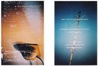 telemistica (10 works) by christian jankowski