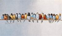 21 vögel (after giacomelli) by valentine arnoulin