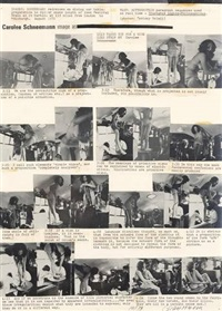 image as (2 works) by carolee schneemann