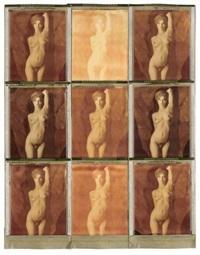 yvette 8/91 (+ neunmal yvette, 9 double exposures on polaroid, smllr; 2 works) by thomas karsten