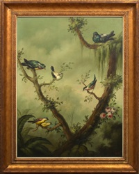 pigeons and songbirds in a tropical landscape by ira monte