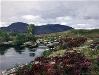 heather beside a moorland stream by george houston