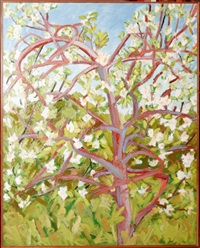 apple tree in blossom by nancy mitchnick