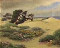 sand dunes with cypress and flowers by william adam