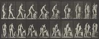 animal locomotion, female (toilet, preparing to put on clothing), plate 415 by eadweard muybridge