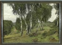 birken an einem hang in weiter waldlandschaft by oskar frenzel