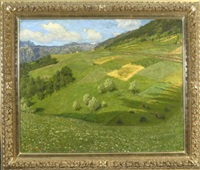 blick von einer sommerwiese auf einen grünen hügel mit feldern by arnoldo soldini