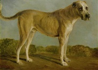 jagdhund by jacques-laurent agasse