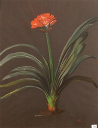 clivia by ernst kreidolf