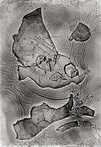 das diluviale aquarium by heinz hajek-halke