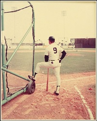 a bat with a cage (from yankee spring training) by stephen shore