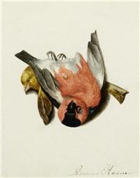 vogelstillleben by adriana johanna haanen