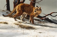 mountain lion in the snow by gary r. swanson