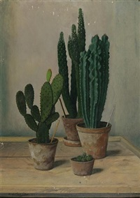 study of cacti by robert knaus