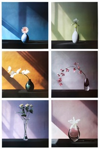 6 flowers (complete set of 6 works with colophon) by robert mapplethorpe