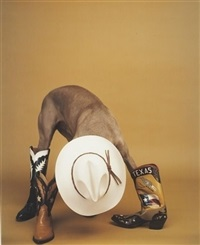 altered state by william wegman