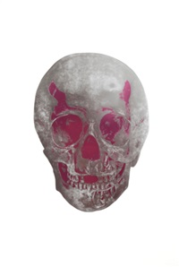 the dead (silver gloss/loganberry pink skull) by damien hirst