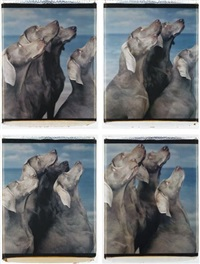 flock (suite of 4 works) by william wegman
