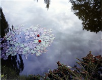 giverny 24, waterlilies by stephen shore
