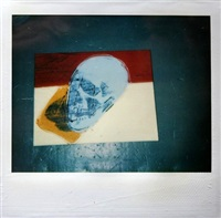 skull polaroid by andy warhol