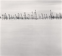 birds on poles, biwa lake, honshu, japan by michael kenna