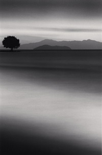 biwa lake tree, omi, honshu, japan by michael kenna