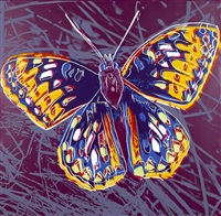 san francisco silverspot (from endangered species) by andy warhol