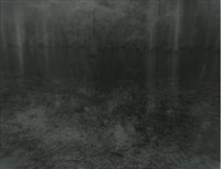 landscape deep south #45b by sally mann