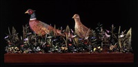 pheasants by james grashow