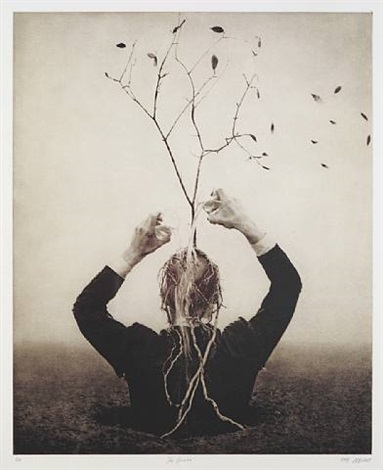 the source by robert & shana parkeharrison