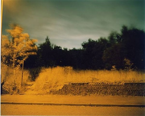 untitled n.8, black country by richard billingham