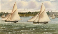 regatta in sydney harbour by charles f. gerrard