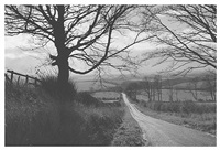 en route to whitby by george tice