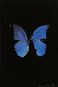 <!--01-->the soul on jacob's ladder by damien hirst
