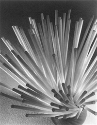 straws by ruth bernhard