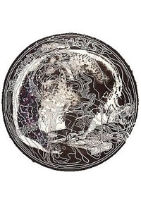 skull snap by james rosenquist