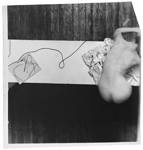 swan song by francesca woodman