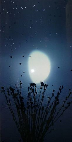 half moon - blossom - blue by susan derges