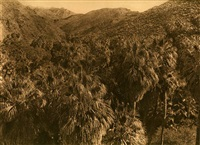palm ganon by edward sheriff curtis