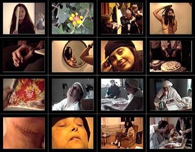 hannah wilke intravenus tapes, 1990 1993 by hannah wilke