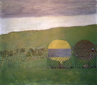 the balloon race by mary newcomb