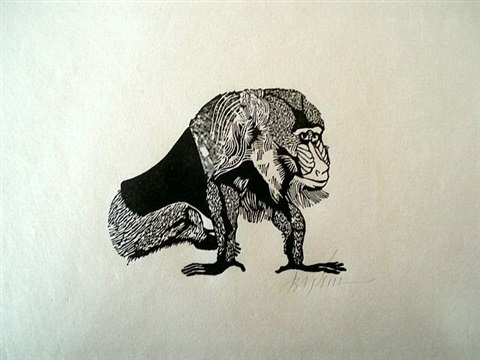 mandrill (baboon) by leonard baskin