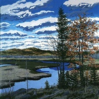 shadow on brigg's meadow by neil welliver