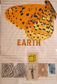 earth by joe tilson