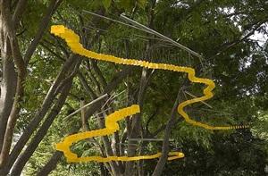 yellow zingers by tim prentice