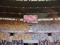 austria 1 (ernst happel stadion, kunsthalle wien) by spencer tunick