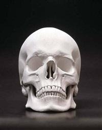 totenkopf (skull) by katharina fritsch