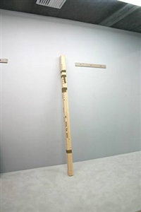 holz ohne raum (no room for wood) by georg herold
